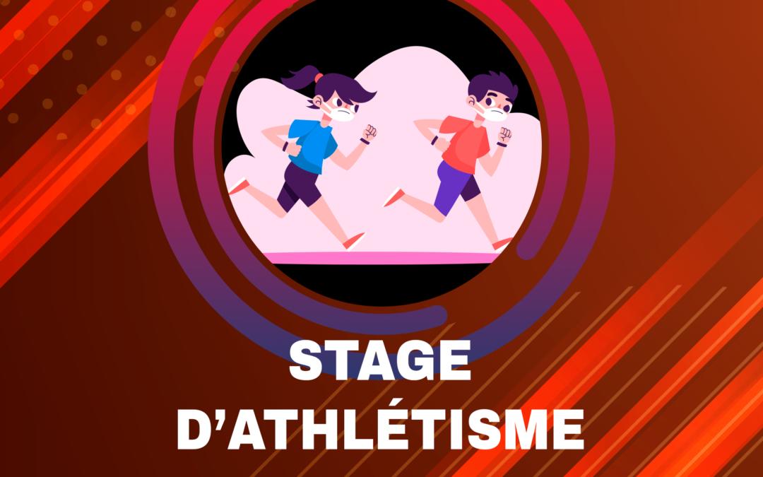 Stage de Novembre 2021 (Toussaint)